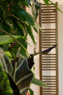 heizk rper laurens alle heizk rper von laurens auf einen blick. Black Bedroom Furniture Sets. Home Design Ideas